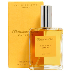 アンバー EDT・SP 100ml AMBRE EAU DE TOILETTE SPRAY