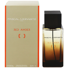 レッドアンバー EDT・SP 100ml RED AMBER EAU DE TOILETTE SPRAY