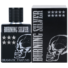 バーニング シルバー EDT・SP 50ml BURNING SILVER EAU DE TOILETTE SPRAY
