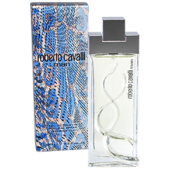 ロベルトカヴァリ マン EDT・SP 100ml ROBERTO CAVALLI MAN EAU DE TOILETTE SPRAY
